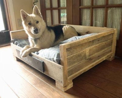recycled-pallet-dog-bed (1)